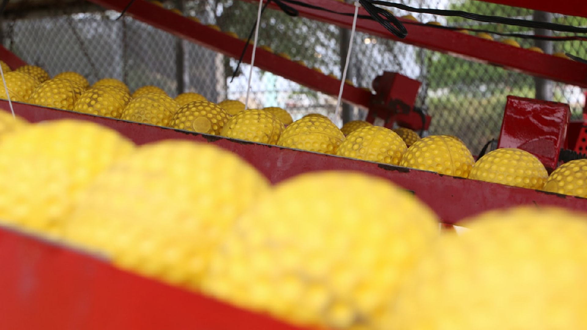 yellow cage balls